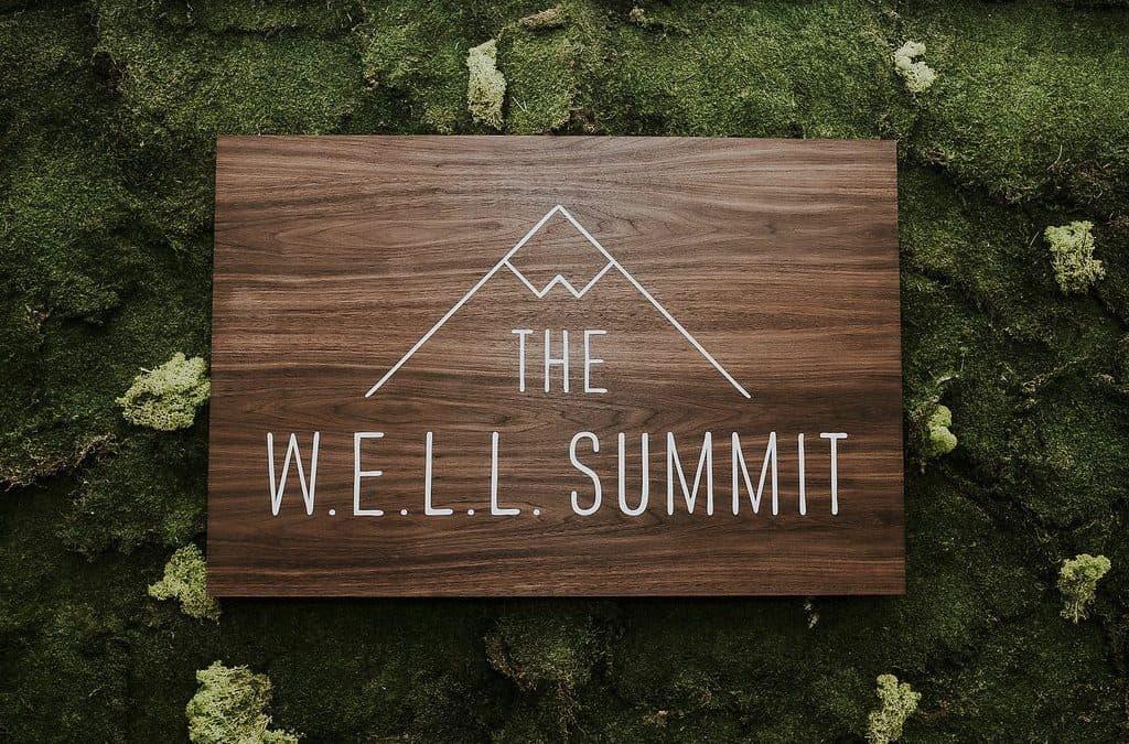 W.E.L.L. SUMMIT 2017